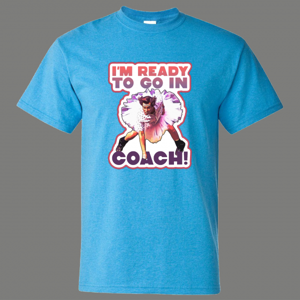 PUT ME IN COACH PSYCH WARD PET DETECTIVE ACE PARODY ART QUALITY SHIRT *FREE SHIPPING